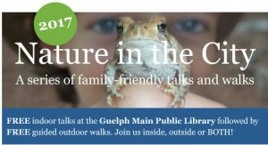 Click here for more info about Nature in the City